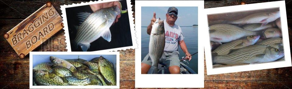 Truman Lake Fishing Guide